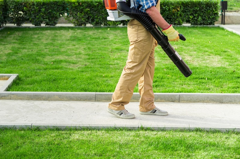 Leaf Blower Benefits For Your Yard The Village Connect